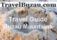 pup_travelbuzau